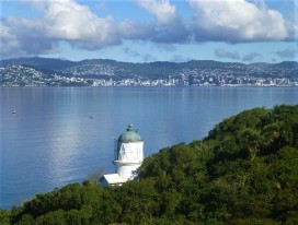 Matiu Somes Island Eco Trek