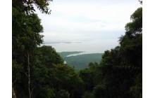 International Mountain Day – Gunung Bintan