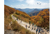 An Autumn's Hike (Korea)