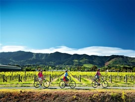 Tasman's Great Taste Trail South Island Ride