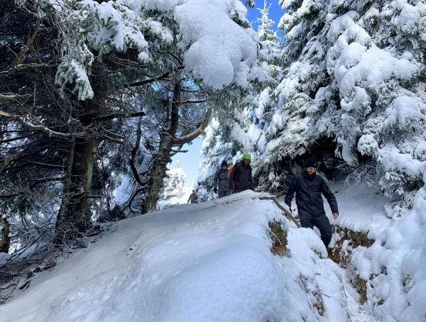 Winter Wonderland in Transylvania