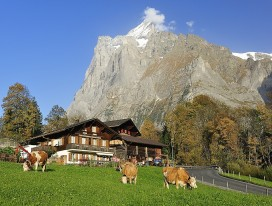 The Great Swiss Outdoors Train Journey