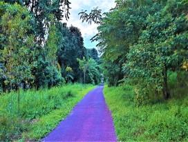 The Green Corridor Heritage Leisure Ride