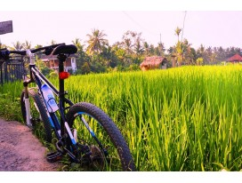 Cycling in Bali Remote East Coast