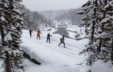Winter Active Fun